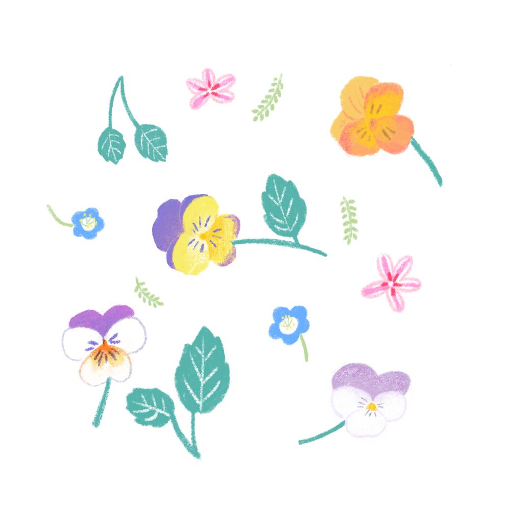 春のいろどり